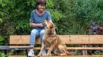 Mehr Nachfragen nach Pflegetieren
