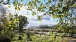 Budget für Bremer Parkpflege wird nicht erhöht
