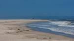 Schädelknochen am Strand von Norderney angespült