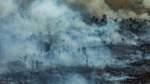 Bilder aus dem Amazonas-Gebiet: Brasiliens Regenwald steht in Flammen