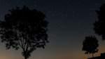 Die Nacht der Sternschnuppen