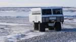Mithilfe spezieller Geländewagen, den sogenannten Tundra Buggys, können Touristen die Eisbären an der Hudson Bay aus nächster Nähe beobachten.