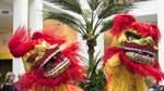 Chinesisches Neujahrsfest im Bremer Übersee-Museum