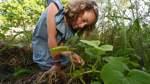 Lilienthaler Schüler lernen, woher das Essen kommt