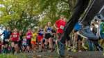 Kein Erbhof-Lauf in Thedinghausen