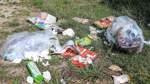 Jedes Jahr grüßt das Müllproblem