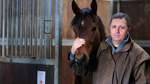 Pferd aus Bremen beim Hamburger Derby