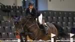 Gebührende Bühne für junge Springpferde in der Verdener Niedersachsenhalle