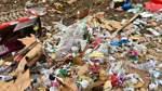 Nach der Silvesternacht bleibt in den Straßen häufig eines zurück: Müll.
