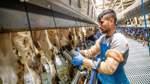 Wie sich die Landwirtschaft in Niedersachsen ändert