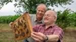Beistand für die Bienen