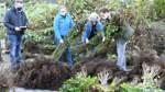 Neue Bäume für Lilienthals Gärten