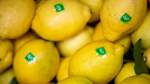Bioprodukte bei Bremern beliebt