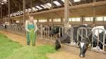 Krudop fordert höheren Milchpreis