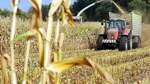 Bauern wegen steigender Pacht besorgt