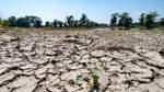 Mehr Klimaschutz für einen angenehmen Sommer