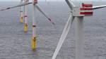 Megawatt vom Wattenmeer