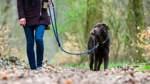 """""""Die häufigsten Verstöße betreffen die Hundeanleinpflicht"""""""