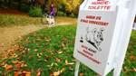 Verwaltung soll Hunde zählen