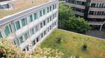 Bremen hat Nachholbedarf bei Dach-Begrünung