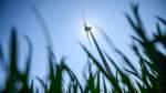 Klimaschutzgesetz: Umweltminister drückt aufs Tempo