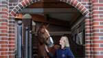 Ein Leben im Zeichen der Pferde