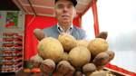 Über 50.000 Besucher zum Kartoffelfest erwartet