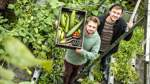 Warum ein Bremer Start-up Fische und Pflanzen züchtet