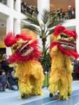 Chinesisches Neujahrsfest  - Übersee-Museum