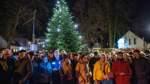 Andrang unterm Weihnachtsbaum