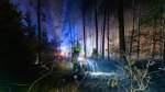 Gefahr der Waldbrände in Niedersachsen nimmt zu