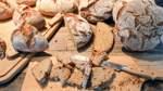 Große Sorge bei Bremer Bäckern und Fleischern