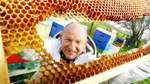Bienen haben Winter und Milben überstanden