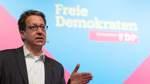 Niedersachsens FDP-Chef will 2022 mitregieren