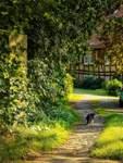 Im Reinhardswald gibt es viele Dörfern mit Fachwerkhäusern.