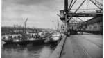 Die Geschichte des Bremer Freihafens