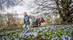 Mehr Geld für die Bremer Parks