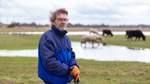 Acht Wasserbüffel sorgen für Landschaftspflege