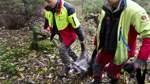 Auf Jagd im Nienburger Wald