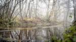 Ja zum Naturpark Teufelsmoor