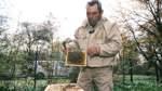Bienen brauchen mehr als eine Brut- und Lagerstätte