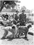 Hundeausstellung in der Pauliner Marsch.