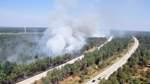 Erneut viele Waldbrände in Niedersachsen