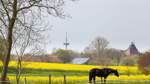 Von Essinghus zu Eschenhausen