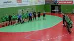Ein emotionaler Handball-Abend