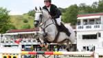 Junges Pferd trotzt fehlender Routine
