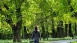 Bremen ist zu mehr als zehn Prozent grün