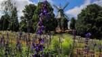 Was der Instagram-Tourismus für Bremer Parks bedeutet