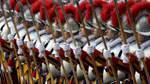 Bald Frauen als Leibwächterinnen des Papstes?