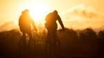 Verbände fordern Studiengang für Radverkehr